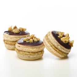 best macarons fort collins