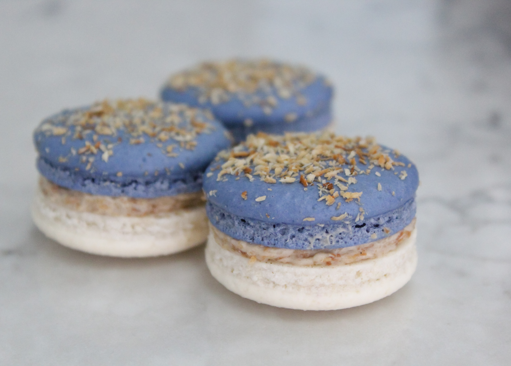 Toasted Coconut & Blueberry